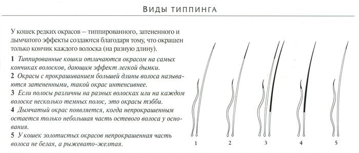http://l-friends.ru/262.jpg